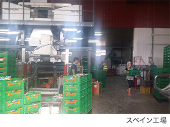 スペイン工場